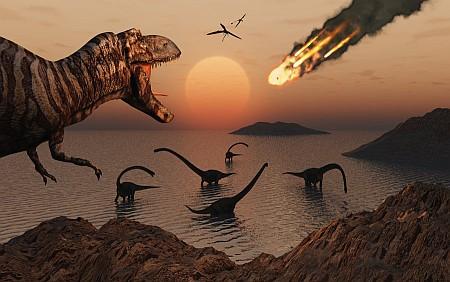 dinosauri ridotta