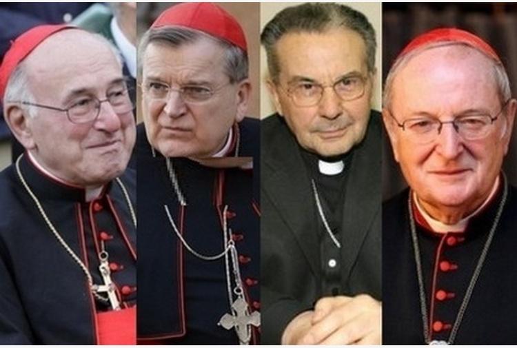 cardinali-4.jpg_997313609